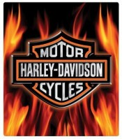 H-D® Flame Logo - Product Image
