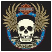 H-D® Spade Skull  - Product Image