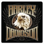 H-D® Eagle Stare - Product Image