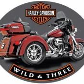H-D ® Wild & Three - Product Image